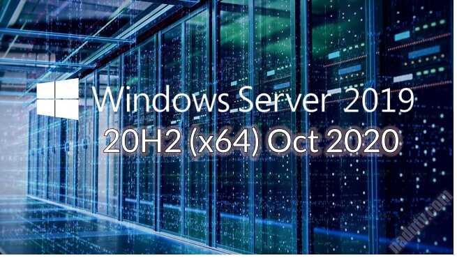 Windows Server 2019 20H2 tháng 10/2020 ver10.0.19042.508