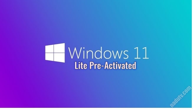 Windows 11 lite Build 21996.1 Pre-activated [Google Driver]